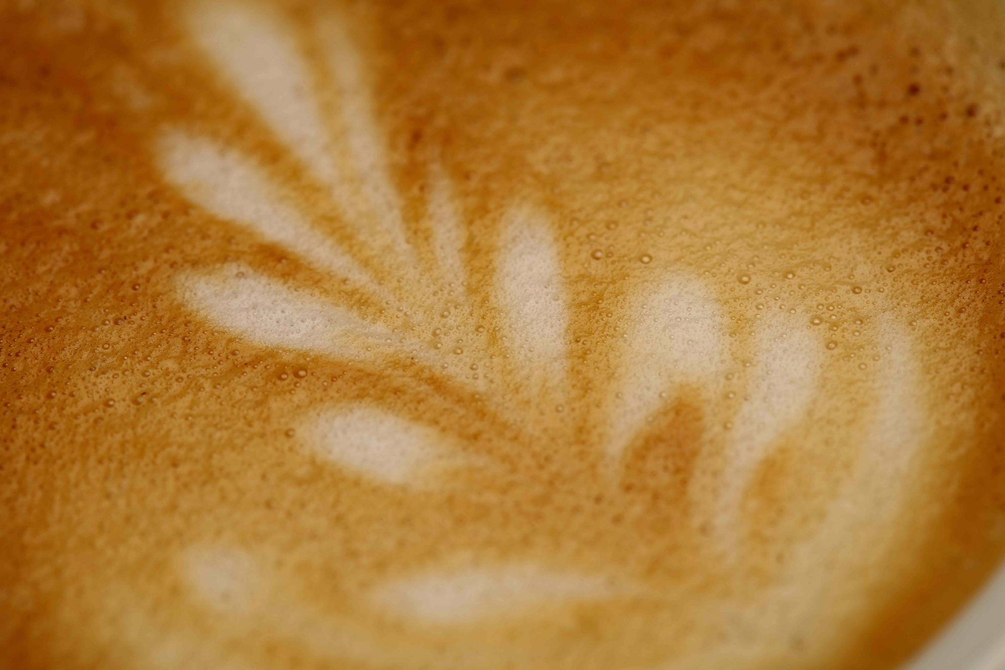 Latte Art Training by Marabans UK Training and Support